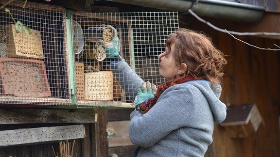 Gärtnerin Brigitte Goss kontrolliert ein Insektenhotel