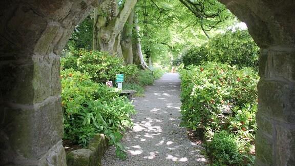 Blick durch einen Torbogen in einen Park