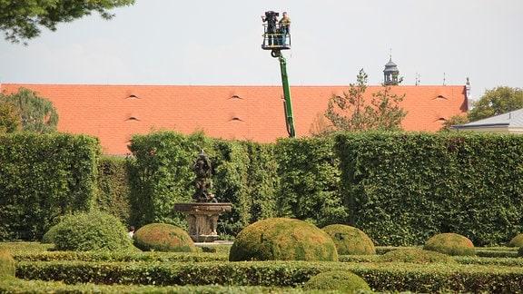 Hinter riesigen Hecken wurde eine Hebebühne hochgefahren auf der ein Kamera-Team arbeitet.