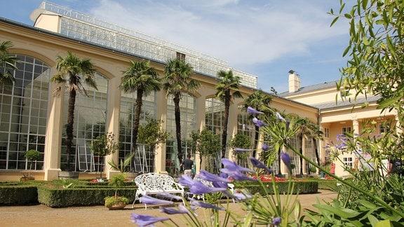 Blick auf die Orangerie mit riesigen Fenstern. Im Vordergrund ist eine Art Platz der am Rand mit Palmen bepflanzt wurde.