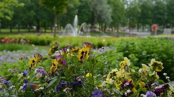 Bepflanzte Beete mit vielen Blumen vor einem Teich.