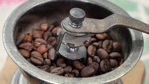 Blick in eine alte Kaffeemühle mit Kaffeebohnen.