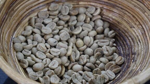 Helle Kaffeebohnen in einer Schale.