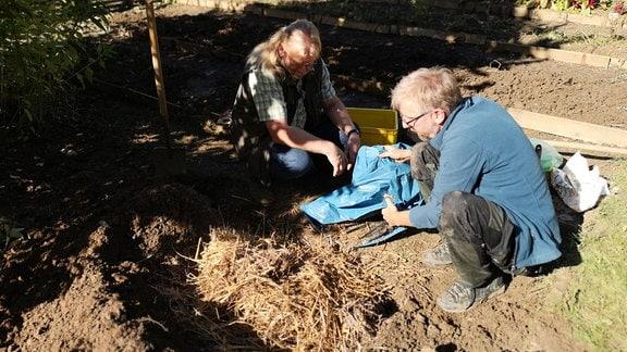 Ein Loch im Beet wurde mit Stroh aufgefüllt.