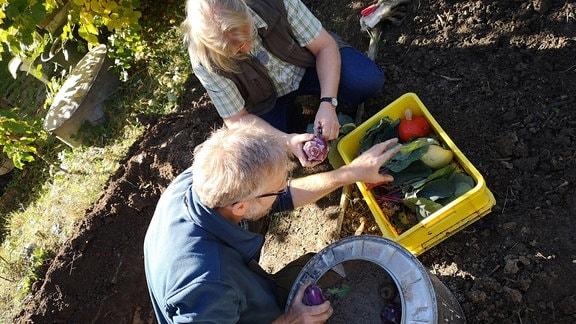 Regisseur Jörg Heiß und Gemüseexperte Martin Krumbein füllen eine Erdmiete.