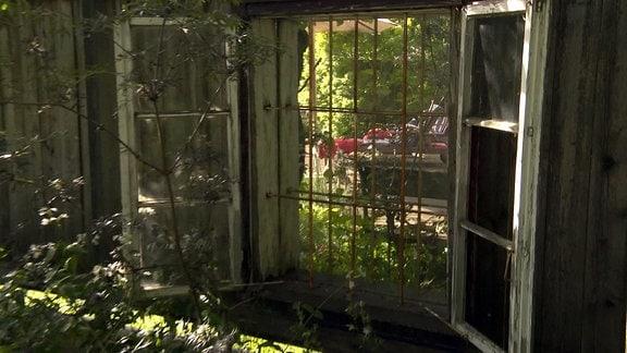 Fenster mit Spiegel an einem Gartenzaun
