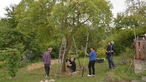 Dreharbeiten unter einem alten Pflaumenbaum