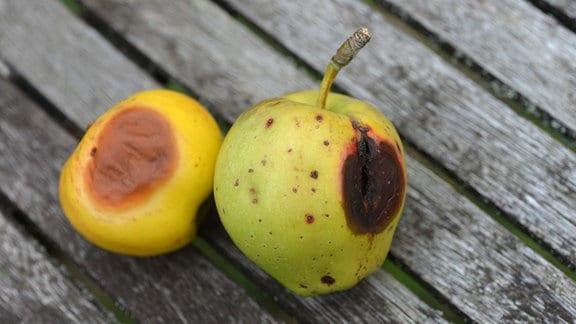 Äpfel mit dunklen Stellen