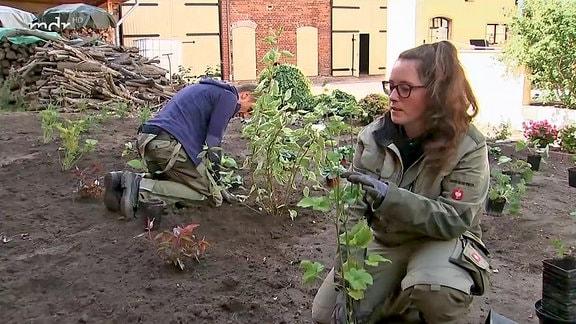 Gartenmeister-Ersatzfrau Melanie beim Bepflanzen eines schattigen Gartens.