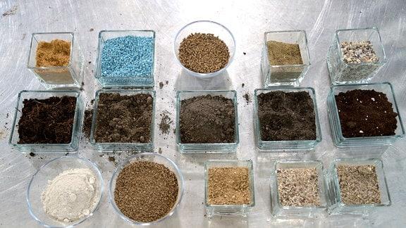 Auf einem Pflanztisch stehen Schälchen mit unterschiedlichem Dünger