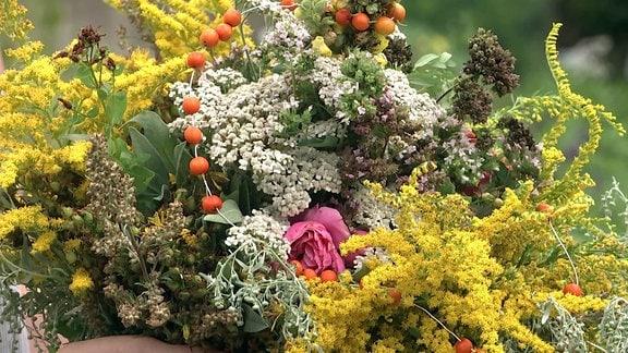 Kräuterbuschen