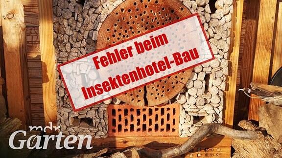 Collage: Insektenhotel an einer Holzwand. Schrift: Fehler beim Insektenhotel-Bau.
