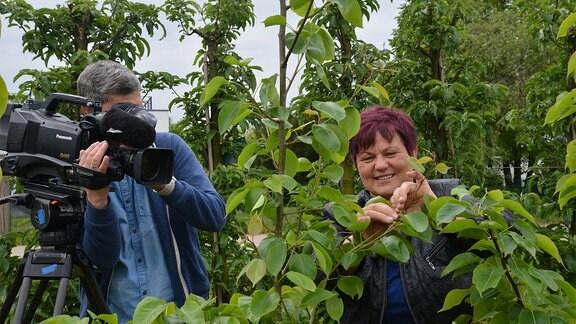 Ein Kameramann  filmt eine Frau die an jungen Obstbäumen arbeitet.