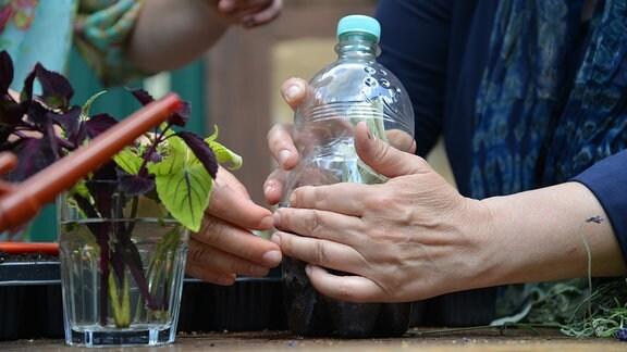 Hände halten eine Plastikflasche