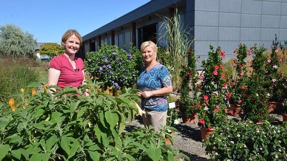 Zwei Frauen stehen inmitten von verschiedenen Kübelpflanzen.