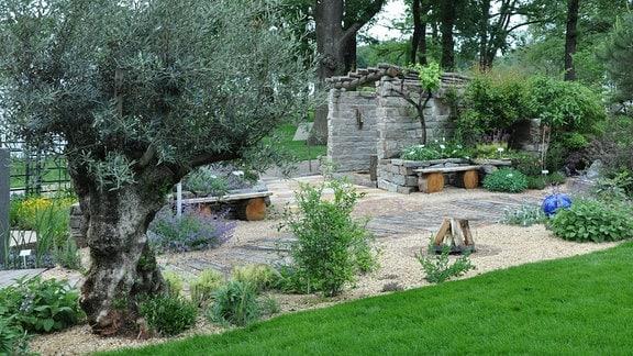 Blick auf einen Garten mit einer Naturstein-Pergola und einen Olivenbaum.