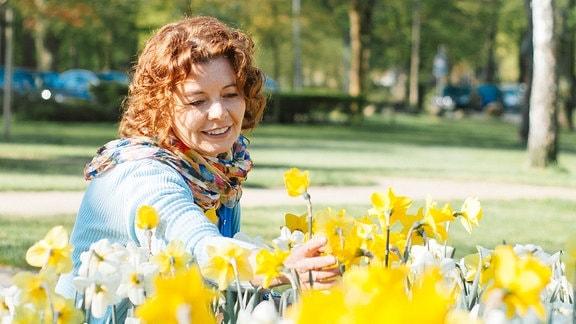 Eine Frau pflückt Blumen von einem Beet mit Narzissen.