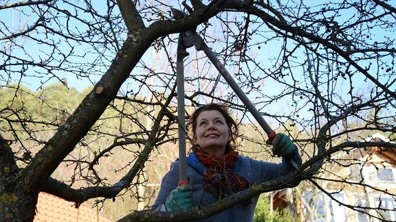 Gärtnerin Brigitte Goss schneidet einen Baum