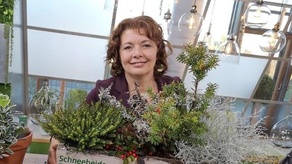 Gärtnerin Brigitte Goss zeigt einen herbstlich bepflanzten Blumenkasten