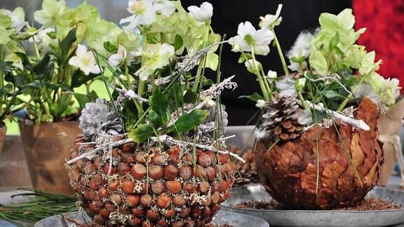Auf einem Tisch stehen mit Christrosen bepflanzte Blumentöpfe aus Styroporkugel, die mit Naturmaterialien beklebt wurden