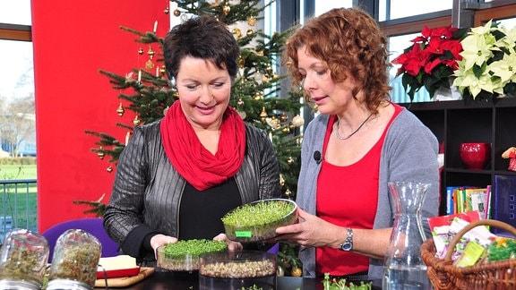 Zwei Frauen stehen hinter einem Tisch voller Gefäße mit Sprossen und unterhalten sich
