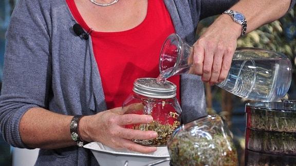 Eine Frau hält in einer Hand ein Keimglas, mit der anderen gießt sie aus einer Karaffe Wasser in das Glas