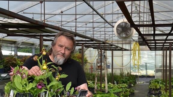 Ein Mann hält eine Kiste mit verschiedenen Orchideen