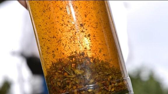 Volle goldgelbe Schnapps-Flasche mit Kräutern auf dem Boden