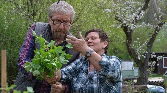 Hobbygärtner Jörg Heiss und Obstbaumexpertin Monika Möhler begutachten Johannisbeerstrauch