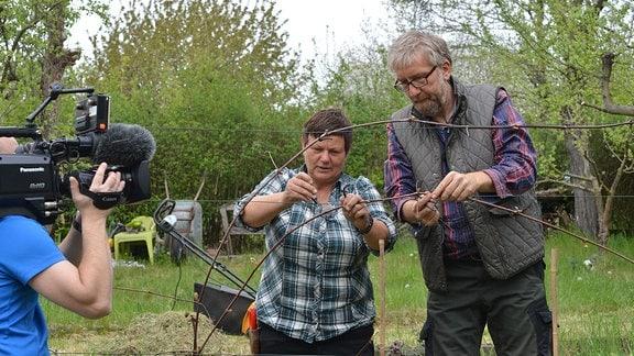 Ein Kameramann filmt Obstbaumexpertin Monika Möhler und Hobbygärtner Jörg Heiss beim Anbinden von Wein am Spalier