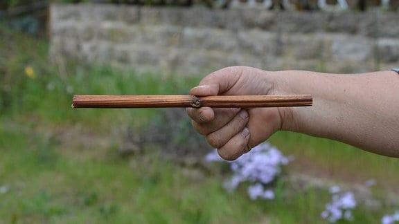 Bambusstab mit Öffnung