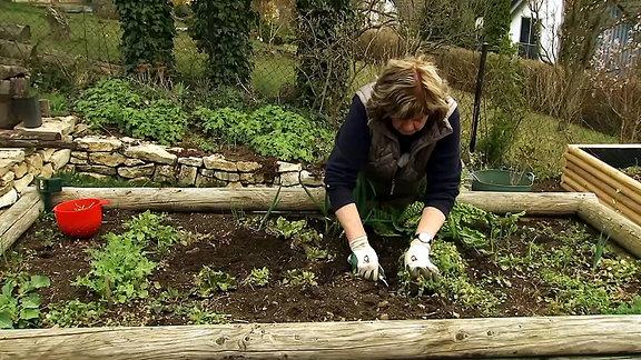 Gartenschätze