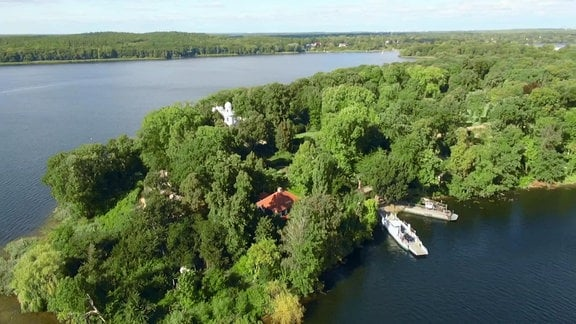Die Pfaueninsel in der Havel