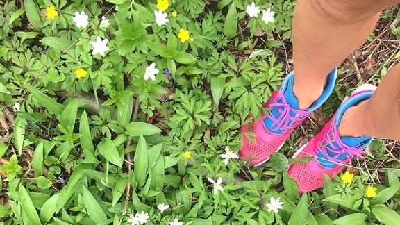 Füße in pink-blauen Turnschuhen stehen auf einem Waldboden, aus dem längliche, grüne Blätter vom Bärlauch sowie weiß blühende Buschwindröschen sprießen