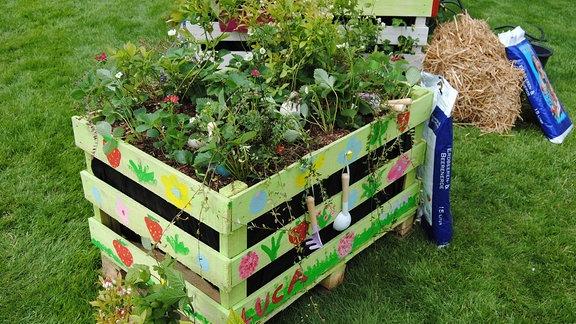 Mit Erdbeeren und Beerensträuchern bepflanztes Hochbeet