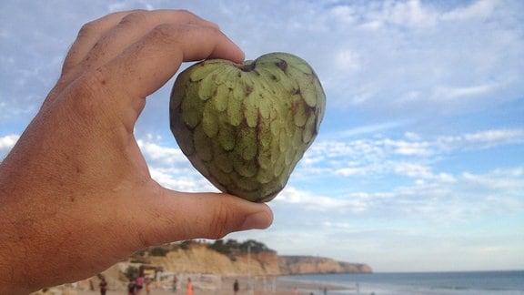 Hand hält herzförmige Cherimoya-Frucht am Strand