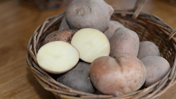 In einer Schale liegt die Kartoffelsorte Sarpo Mira. Eine Kartoffel ist aufgeschnitten.