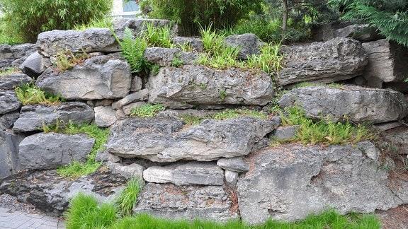 Trockenmauer im Chinesischen Garten Weißensee