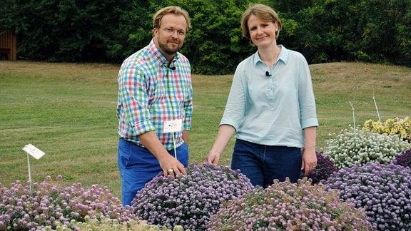 MDR Garten-Moderator Jens Haentzschel und Zierpflanzenexpertin Luise Radermacher stehen hinter mehreren Töpfen mit Duftsteinrich (Lobularia maritima) auf dem Freigelände der Lehr- und Versuchsanstalt für Gartenbau in Erfurt.