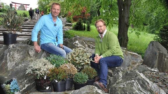 Zwei Männer sitzen hinter Rhododendron-Pflanzen auf Steinen.