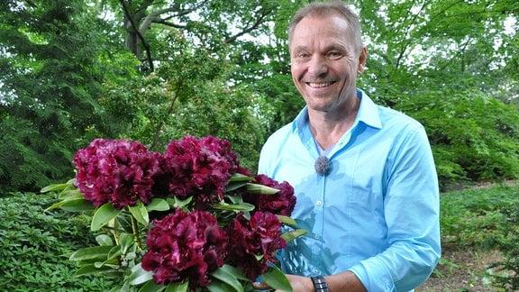 Ein lächelnder Mann hält einen Rhododendron in einem Kübel hoch.