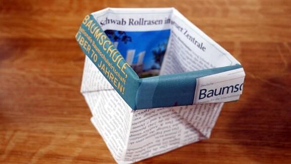 Paperpotts sind aus einer Zeitung gefaltete Pflanztöpfe.