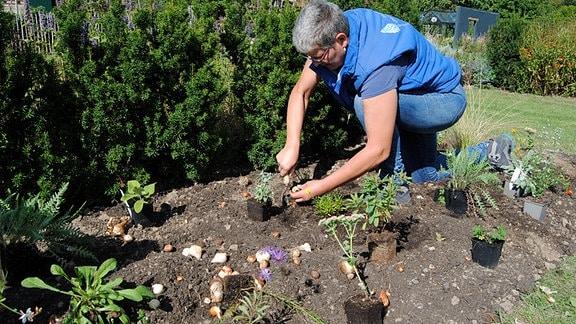 Gärtnereibetreiberin Jolanda van Amerom pflanzt Stauden und Blumenzwiebeln