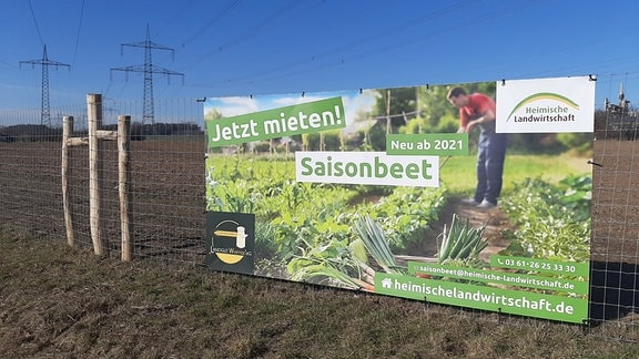 Werbetafel zum Mieten eines Saisonbeets