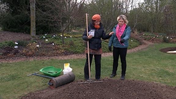 Boden für Blumensamen vorbereiten