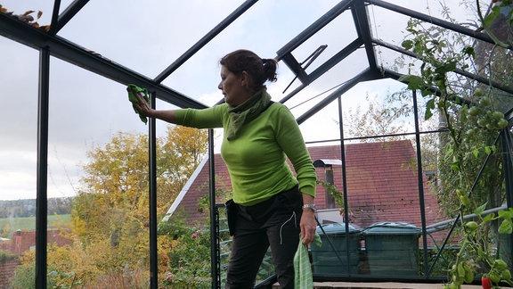 Gärtnerin Brigitte Goss putzt Scheiben von Gewächshaus