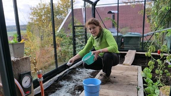Gärtnerin verteilt Gesteinsmehl auf Erde in Gewächshaus