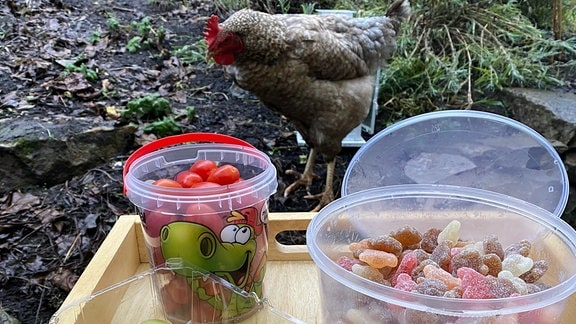 Plastik-Verpackungen von Obst, Gemüse und Weingummi