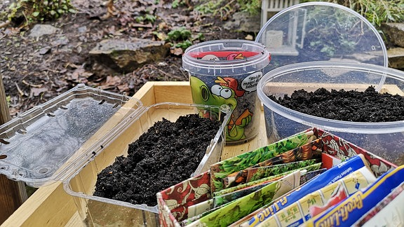 Saatgut-Tütchen und mit Erde gefüllte Verpackungen aus Plastik