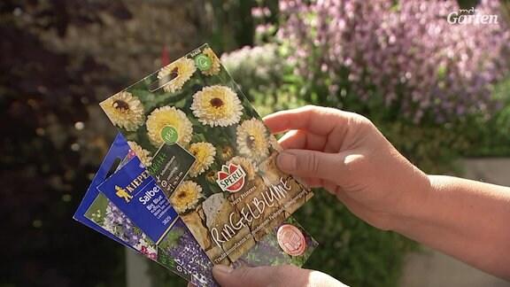Saatgut-Tüten mit Samen der Ringelblume